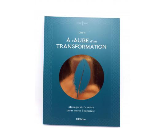 A LAUBE D UNE TRANSFORMATION